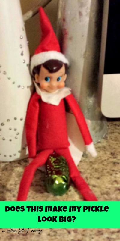 elfie and the pickle elf on the shelf ideas