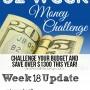 52 Week Challenge: Ideas for Saving Money- Uses for Vinegar