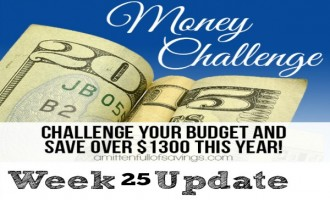 52 Week Money Challenge Buy Generic Medication
