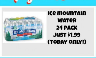 Meijer Ice Moutain Pack deal
